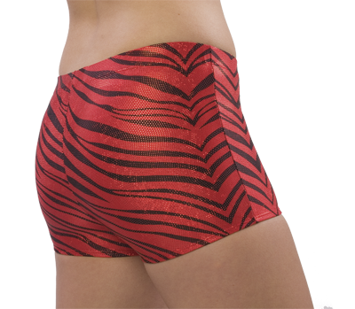 2500ZG and 2600ZG Pizzazz Zebra Glitter Boys Cut Brief - Click Image to Close